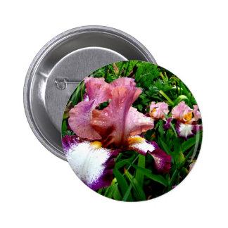 Purple Iris Pinback Button