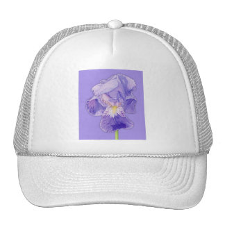 Purple Iris purple Hat