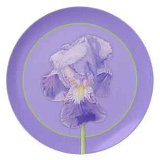 Purple Iris purple Plate plate