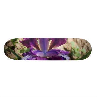 Purple Iris Skate Board Decks