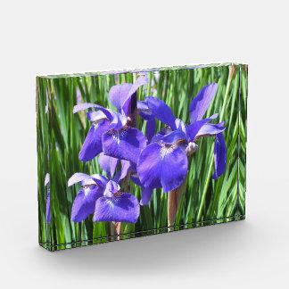 Purple Irises Acrylic Photo Block Award