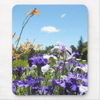 Purple Irises and Sky Mousepad