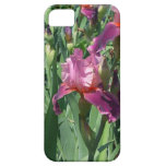 Purple Irises Beautiful Garden Flowers iPhone SE/5/5s Case