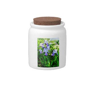 Purple Irises in the Suburbs Candy Jar