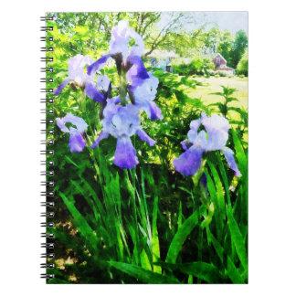 Purple Irises in the Suburbs Notebook