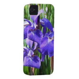 Purple Irises iPhone4 case iPhone 4 Cover