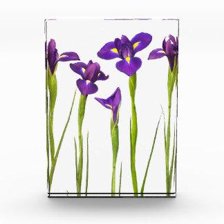 Purple Irises - Iris Flower Customized Template Awards