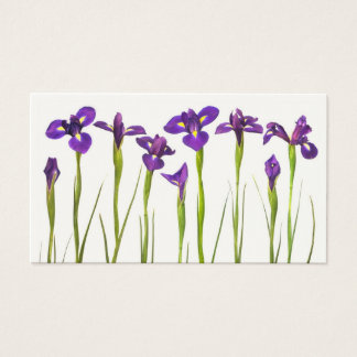 Iris flower business cards templates zazzle purple irises iris flower customized template business card pronofoot35fo Choice Image