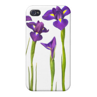 Purple Irises - Iris Flower Customized Template Cover For iPhone 4