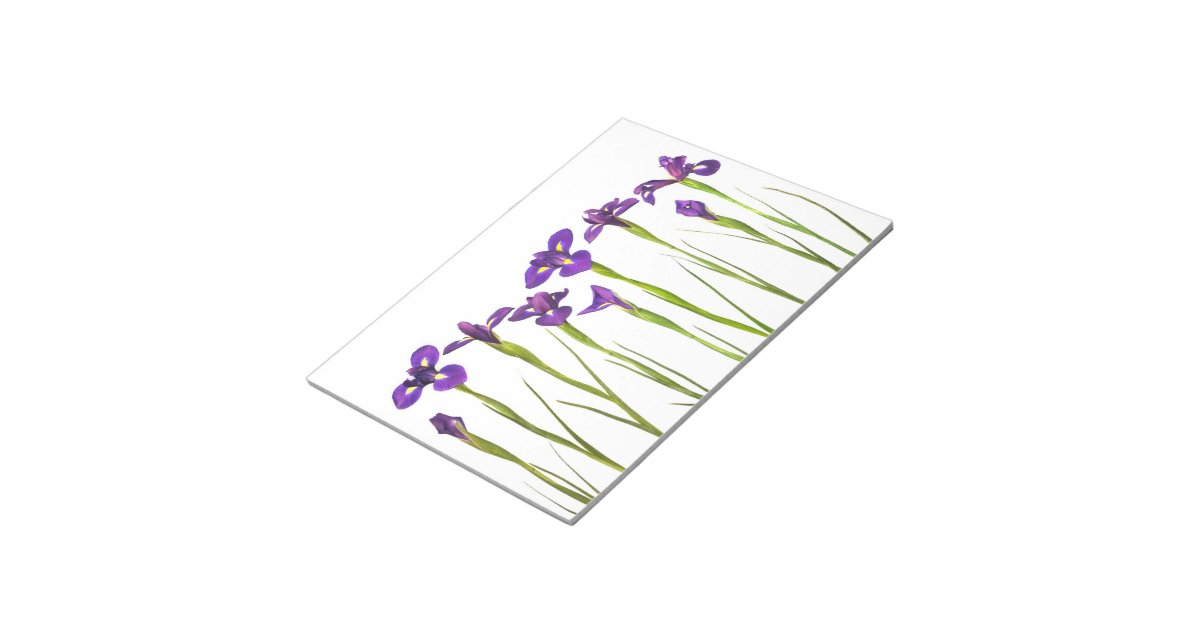 Iris flower template 28 images coloring sheets iris flowers iris flower template purple irises iris flower customized template note pad pronofoot35fo Image collections