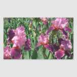 Purple Irises Sticker