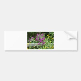 Purple Ironweed Wildflowers - Vernonia gigantea Bumper Sticker