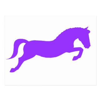 Purple Jumping Pony Postcard