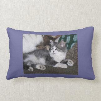 Purple Kitten Nap Pillow