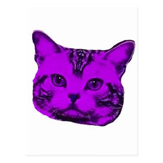 Purple Kitty Postcard