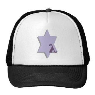 Purple Lambda Star Trucker Hat