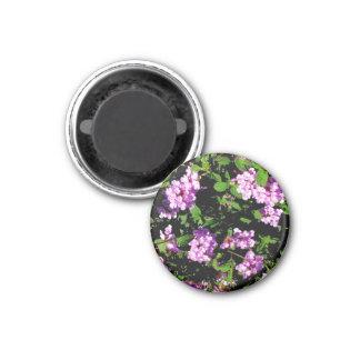 Purple Lantana Flowers On A Magnet