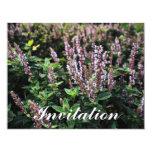 Purple Lavander flowers 4.25x5.5 Paper Invitation Card
