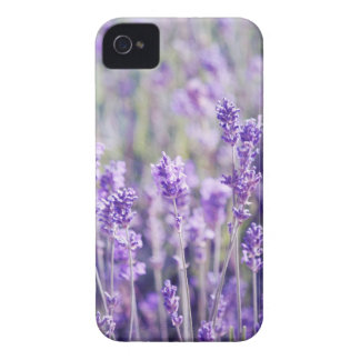 Purple Lavender Field iPhone 4 Case-Mate Case