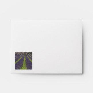 Purple lavender fields near Sault Envelopes