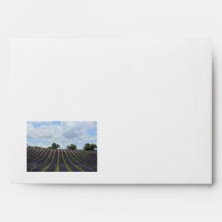 Purple lavender fields near Sault Envelope