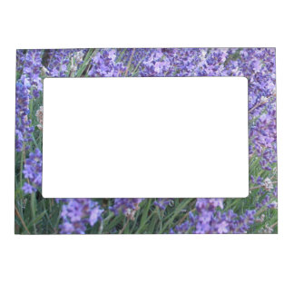 Purple Lavender Flower Magnetic Picture Frame