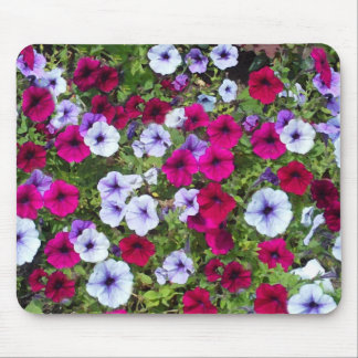 Purple & Lavender Flowers: Mouse Pad