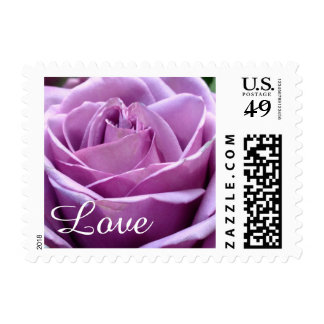 Purple Lavender Rose Flower Postage