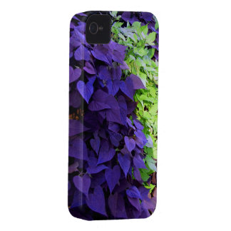 Purple leaves iPhone 4 cover