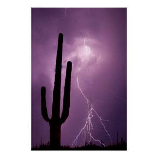 Purple lightning and cactus, AZ Poster