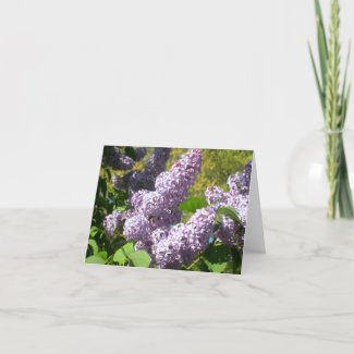 Purple Lilac 4 note cards card