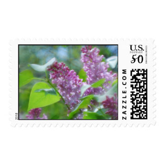 Purple Lilac Flowers Postage Stamp