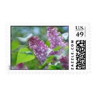 Purple Lilac Flowers Postage Stamp