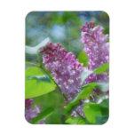 Purple Lilac Flowers Premium Magnet Magnet