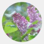 Purple Lilac Flowers Stickers