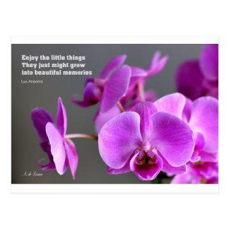 Purple lilac mauve orchid, inspirational quote postcard