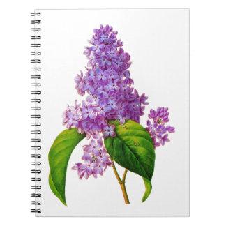 Purple Lilacs by Pierre-Joseph Redoute Journal