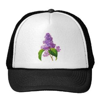 Purple Lilacs by Pierre-Joseph Redoute Trucker Hat
