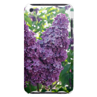 Purple Lilacs  iTouch Case Case-Mate iPod Touch Case