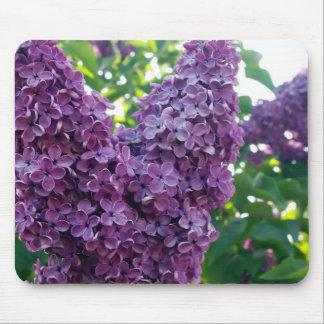 Purple Lilacs Mouse Pad