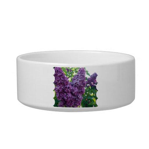 Purple Lilacs Pet Bowl