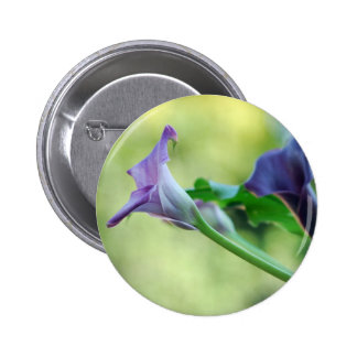 Purple Lilies Pins