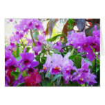 Purple Lilies Floral Note Card