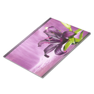 Purple Lily with Waterfall Scratch Pads