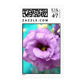 purple lizyanthus postage stamp