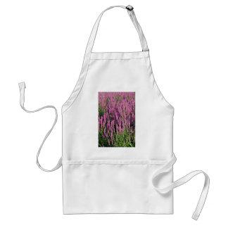 Purple loosestrife flowers apron