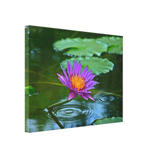 PURPLE LOTUS BLOSSOM WITH GOLD CENTER CANVAS PRINT