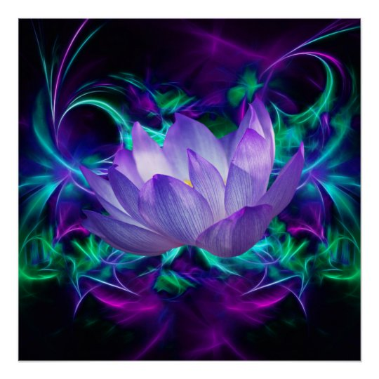Purple Lotus Flower And Its Meaning Poster Zazzlecom