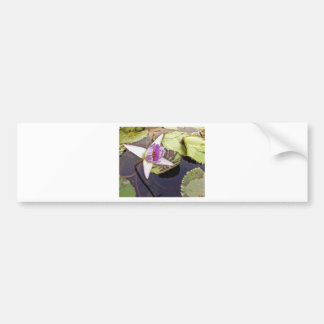 Purple Lotus Flower Drawing Bumper Sticker