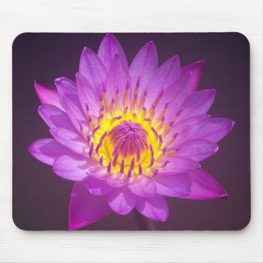 Purple Lotus Flower Mouse Pad